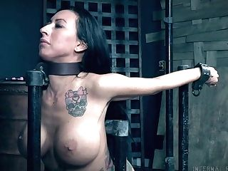 Giant Boobed Tattooed Mummy Lily Lane Gets Tied Up And Masturbated